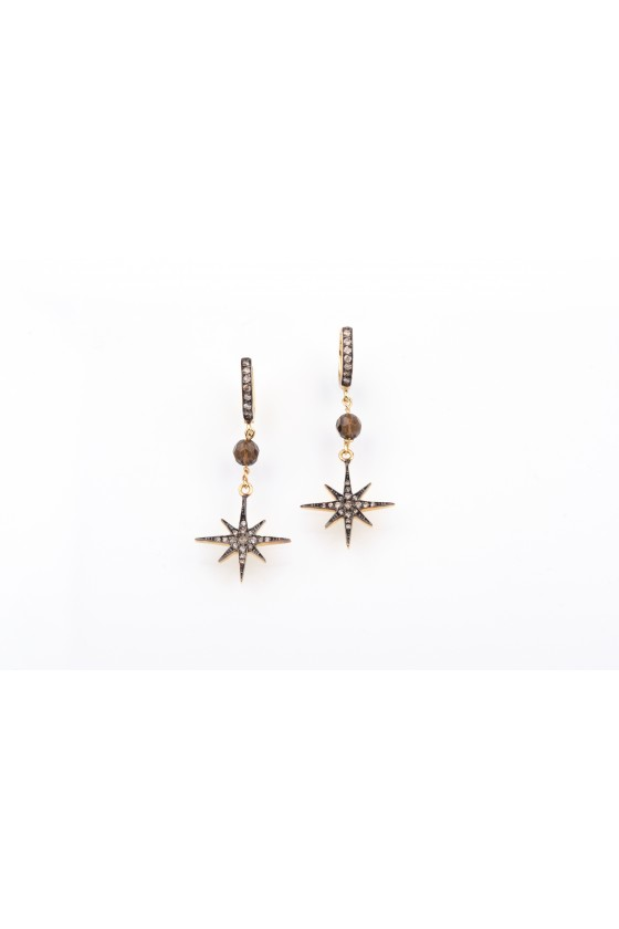 Compass hook earring